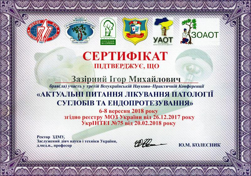 Сертифікат з Всеукраінської Науково-практичної Конференції